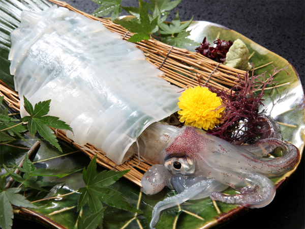 【萩の踊る活きケンサキイカ姿造り会席】萩が誇る日本海の絶品グルメを堪能♪