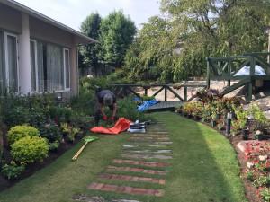 16年秋ガーデン植え替え