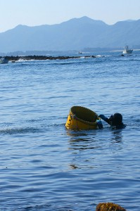 素潜り漁2