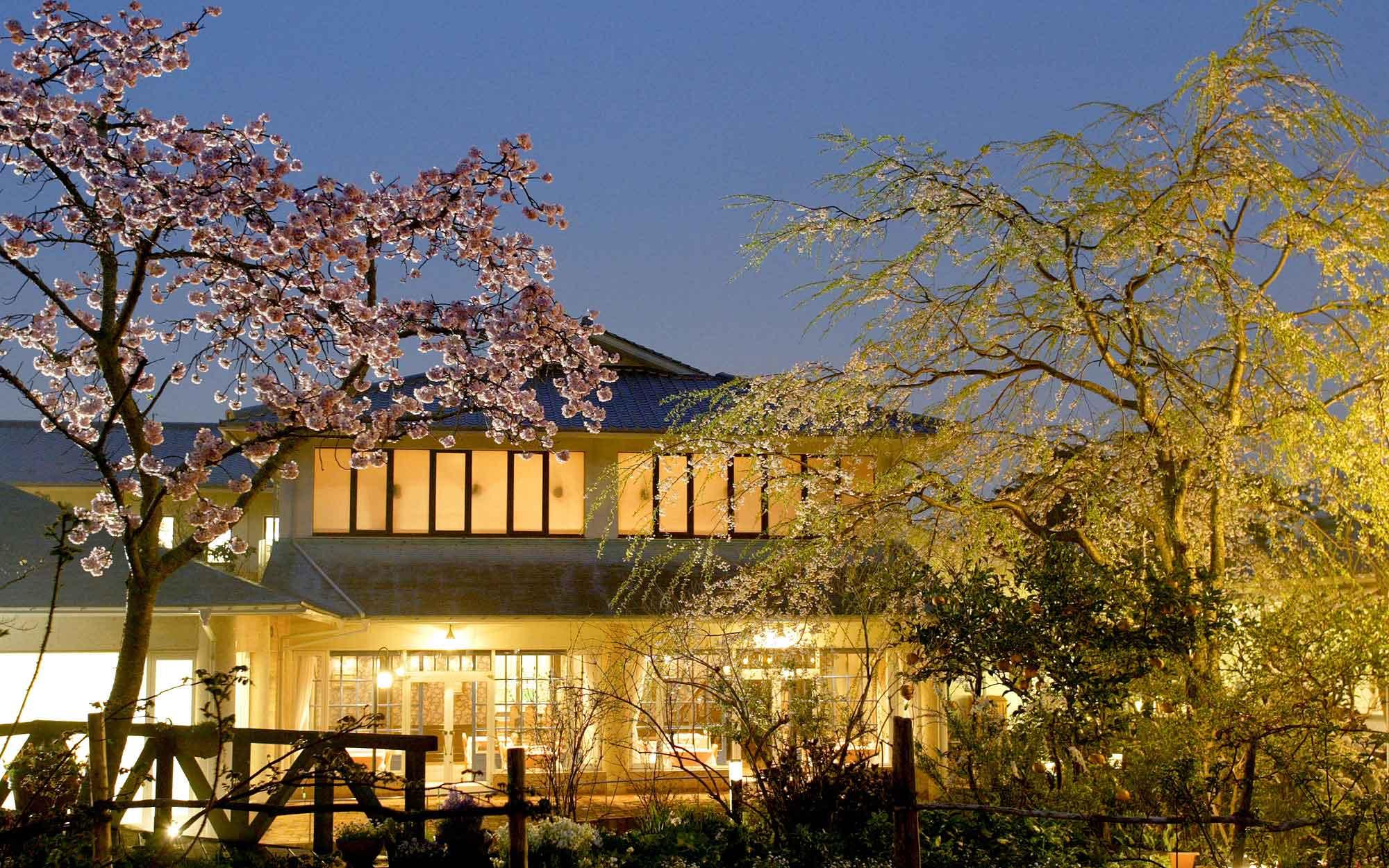 03桜とウィステリア - 山口県 萩市|世界遺産[萩城下町]唯一の旅館 萩城三の丸 北門屋敷